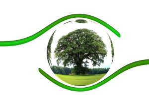 ecology-450590_960_720